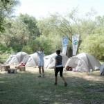veliko-ratno-ostrvo-eko-kamp
